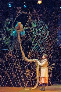 Into the Woods_rapunzel_20121102_03.jpg.jpg