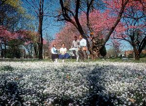 Students_spring_flowers_c1962.004.jpg.jpg