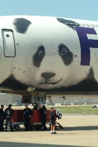 Panda_logo_on_airplane_20030407_004.jpg.jpg