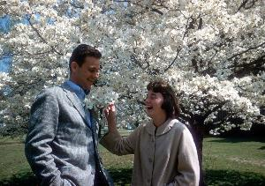 man_woman_dogwood_tree_1962.jpg.jpg