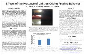 201804_Kasetty_Keerthana_EffectsofthePresenceofLightonCricketFeedingBehavior_poster.pdf.jpg