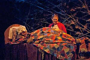 Into the Woods_riding hood_cottage_20121102_01.jpg.jpg