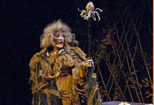 Into the Woods_20121102_witch_01.jpg.jpg